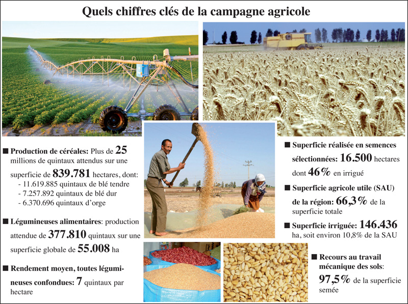 campagne_agricole_031.jpg