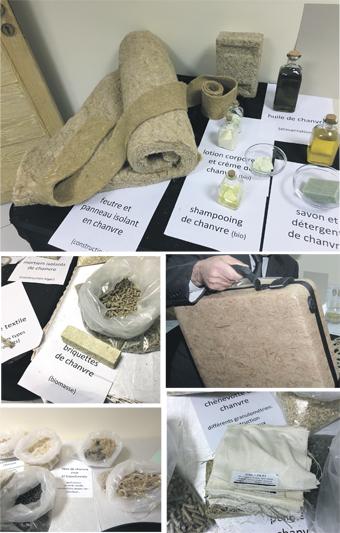 cannabis_piste_095.jpg