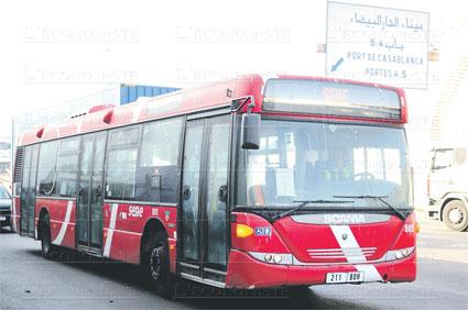 casa-bus-006.jpg