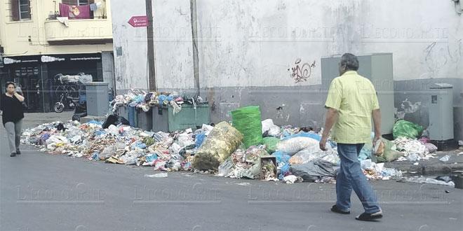 casa-dechets-ordures-2-052.jpg
