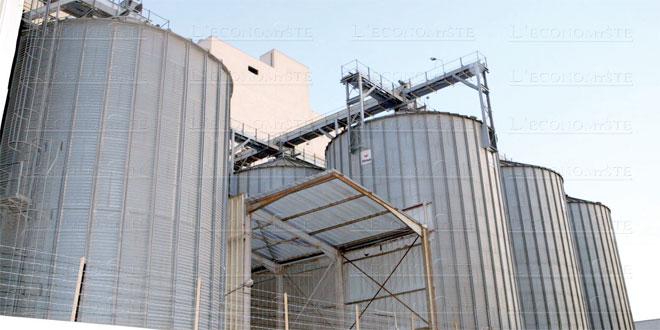 cerealiculture-027.jpg