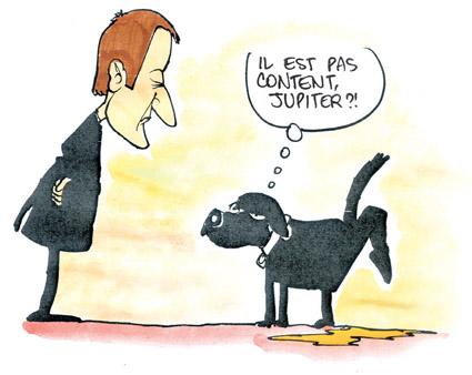 chien_macron_035.jpg