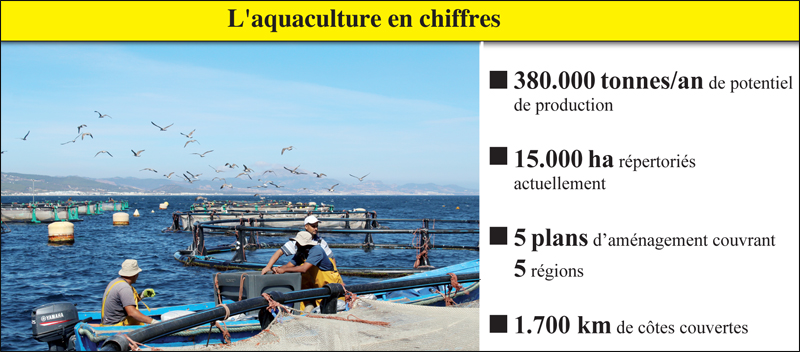 chiffres_aquaculture_015.jpg
