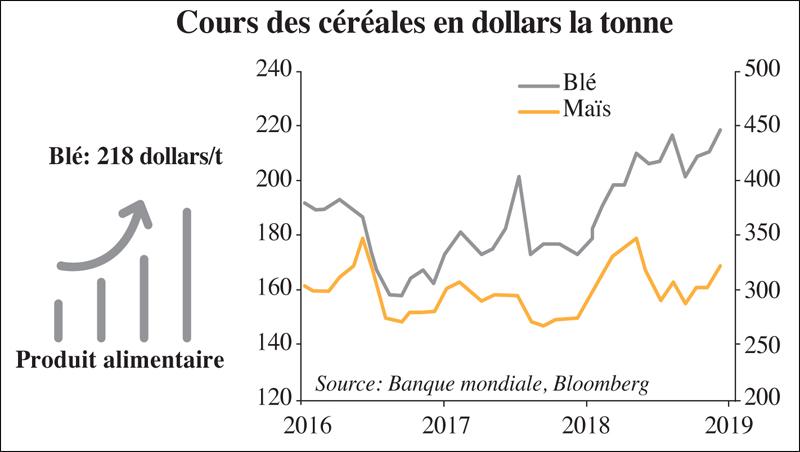 cours_des_cereales_065.jpg