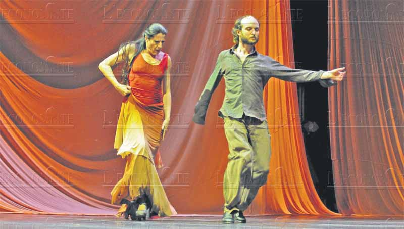 danse_contemporaine_001.jpg
