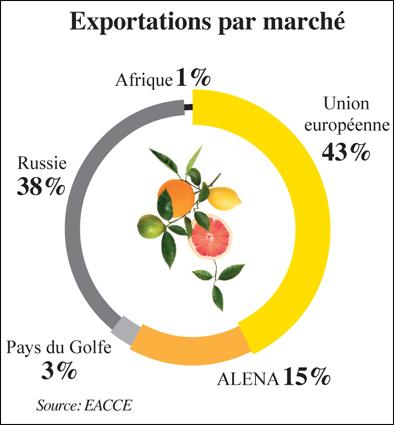 exportation_marche_agrumes_045.jpg