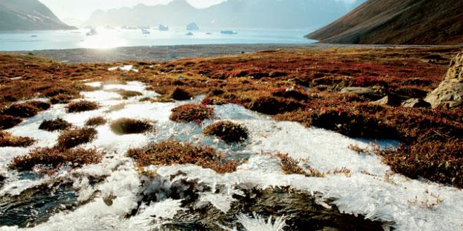 fonte-du-permafrost-en-siberie-047.jpg