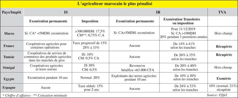 fruits-et-legumes-084.jpg