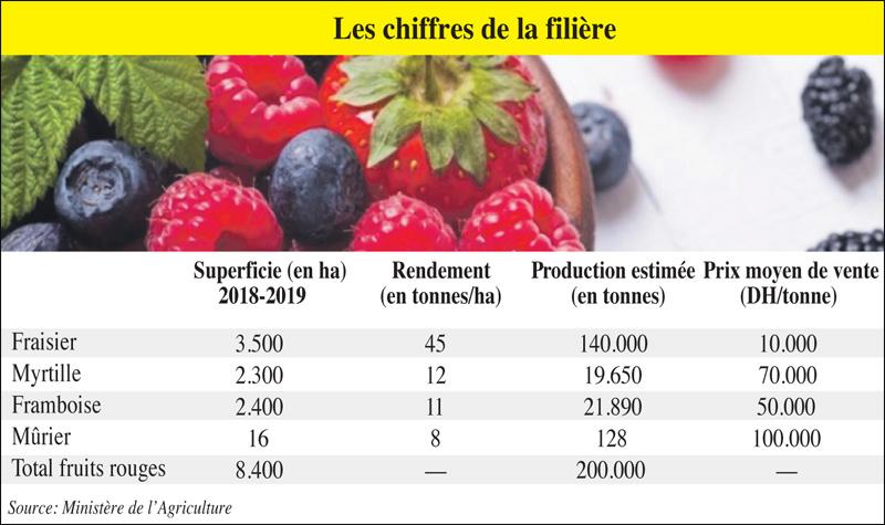 fruits_rouge_097.jpg
