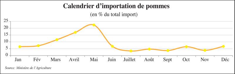 import-pomme-058.jpg