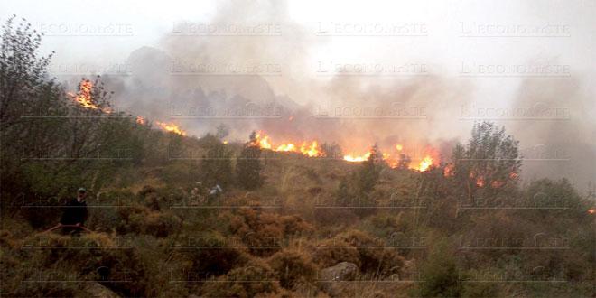 incendie-catastrophes-naturelles-079.jpg
