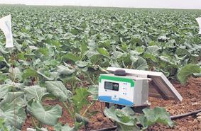 irrigation_systeme_063.jpg