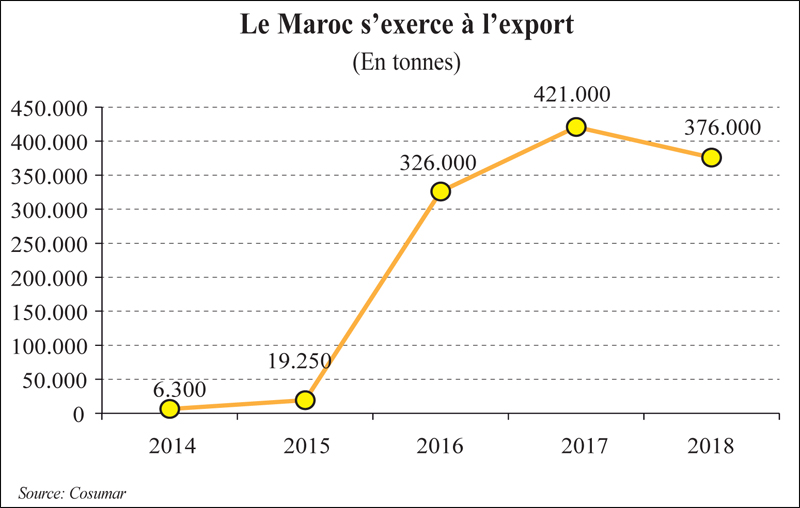 maroc_export_016.jpg