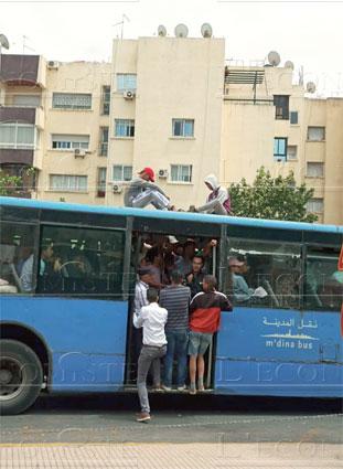 mdina-bus-042.jpg