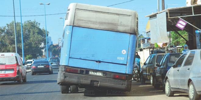 mdina-bus-095.jpg