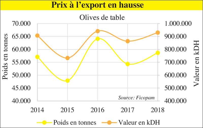 olive_de_table_export_083.jpg