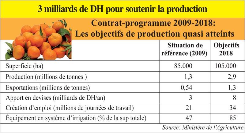 oranges_014.jpg