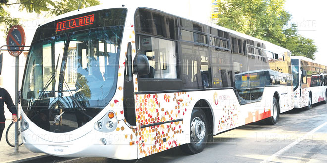 oujda-transport-027.jpg