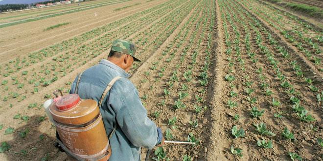 pesticides-010.jpg