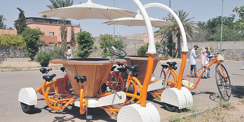 pikala_jardin_velo_marrakecj_018.jpg