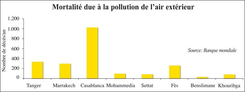 pollution_sauvetage_038.jpg