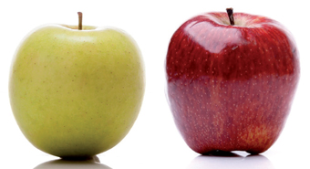pomme_golden_delicious_vs_starking_delicious_043.jpg