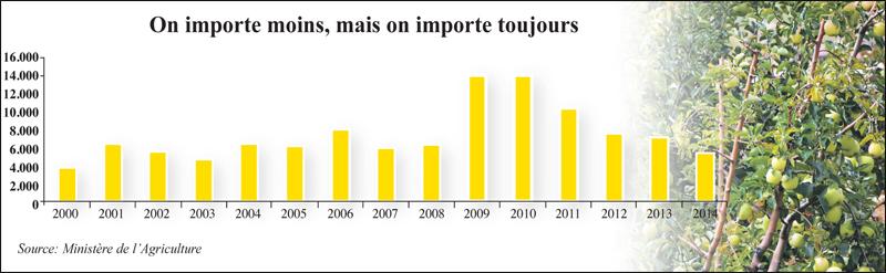 pommes_importation_043.jpg