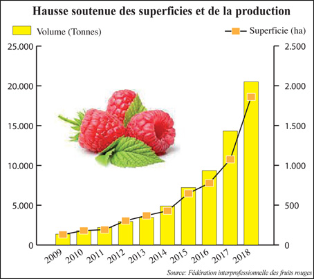 production_framboise_049.jpg