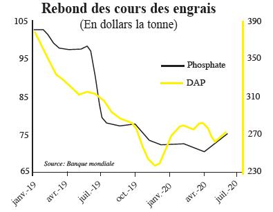rebond_des_cours_des_engrais.jpg