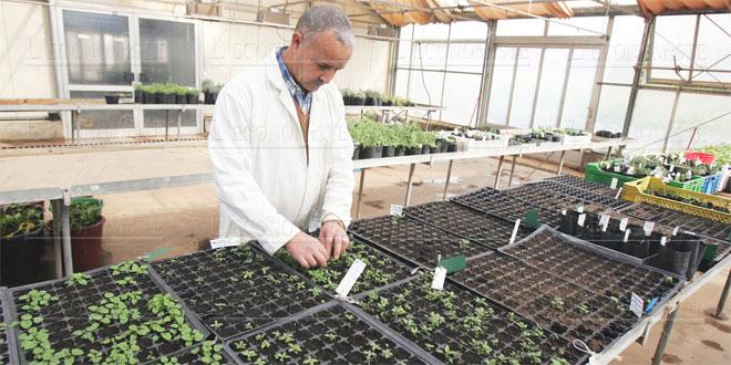 recherche-agroalimentaire-061.jpg