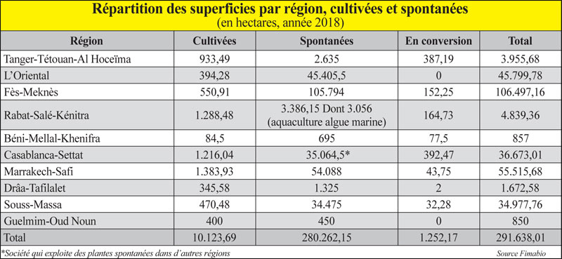 repartition-des-superficies-056.jpg