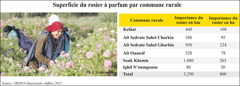 rosier_a_parfumd_042.jpg