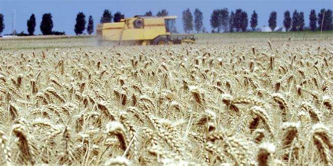 salon-de-la-cerealiculture-031.jpg