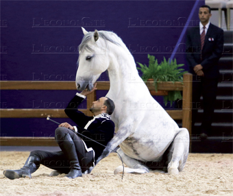 salon_du_cheval_010.jpg