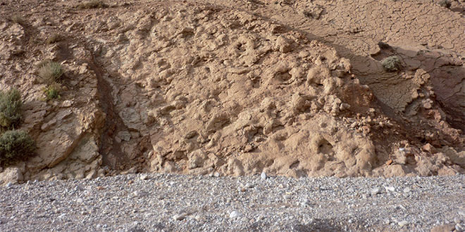 site-paleontologique-048.jpg