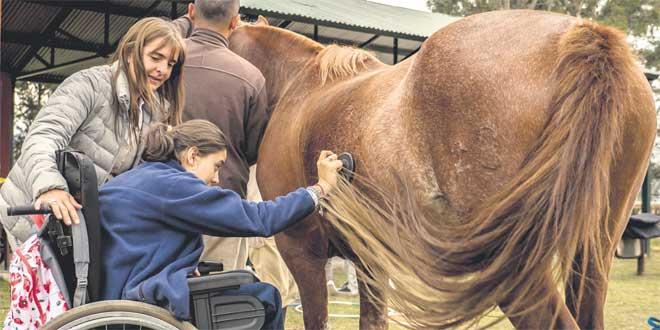 soigner-par-le-cheval-xiv-052.jpg