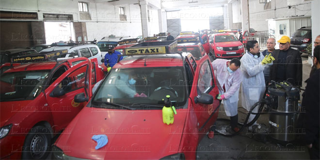 taxis-028.jpg