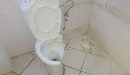 toilette-047.jpg