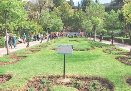 tourisme-a-beni-mellal-010.jpg