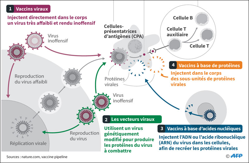 vaccins-010.jpg