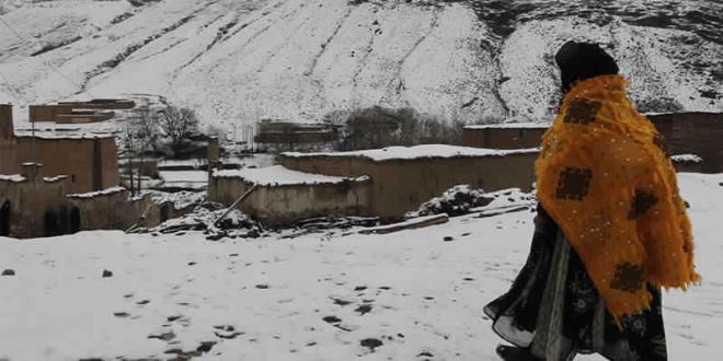 Vague de froid: La riposte s'organise