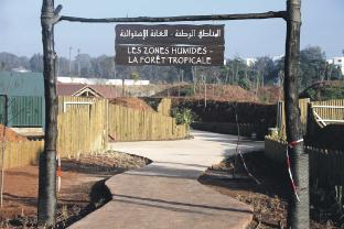 escort vanløse Givskud Zoo rabat